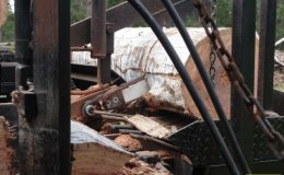 blackbutt-engineering-firewood-processor-12