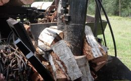 blackbutt-engineering-firewood-processor-15