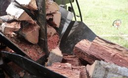 blackbutt-engineering-firewood-processor-16