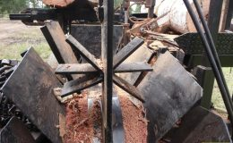 blackbutt-engineering-firewood-processor-18
