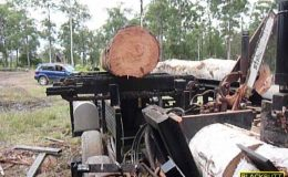 blackbutt-engineering-firewood-processor-19