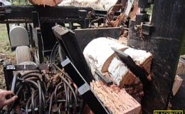 blackbutt-engineering-firewood-processor-20