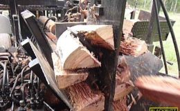blackbutt-engineering-firewood-processor-21