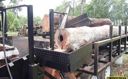 blackbutt-engineering-firewood-processor-23