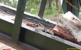 blackbutt-engineering-firewood-processor-25