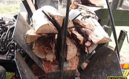 blackbutt-engineering-firewood-processor-27